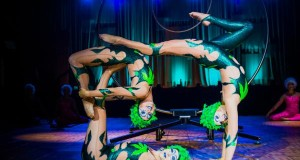 A2D2 ~Aerial Dance Cirque Co